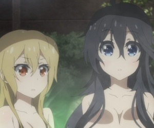 And You Thought There is Never a Girl Online? Fanservice Ako and Akane