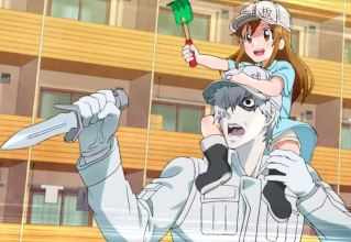 Cells at Work Platelet and White Blood Cell